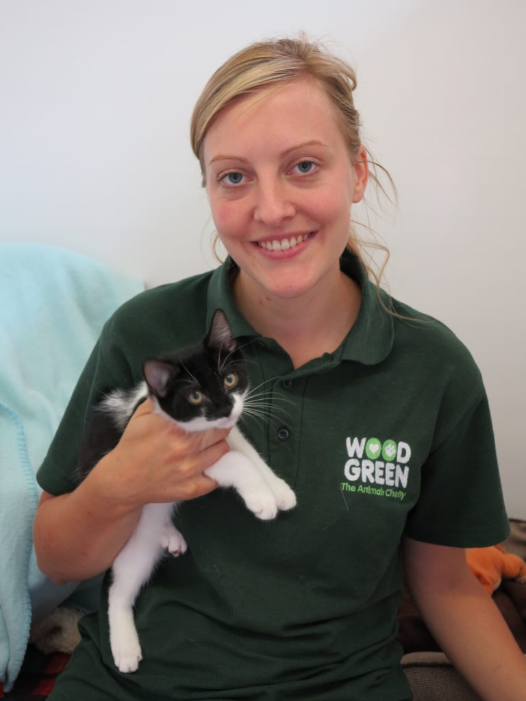 Vet holding black and white cat