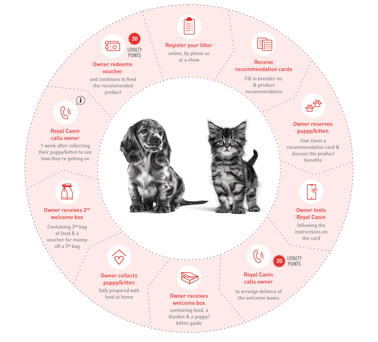 Making Your Royal Canin Recommendation diagram